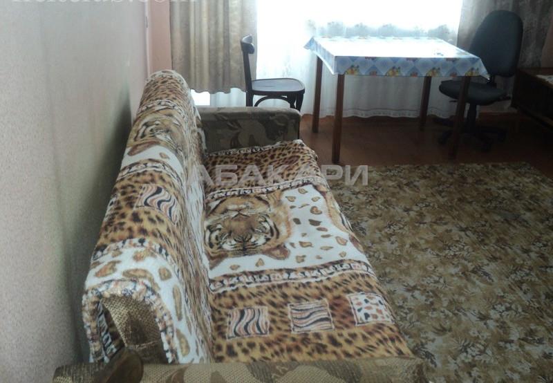 1-комнатная Мечникова Свободный пр. за 12000 руб/мес фото 1