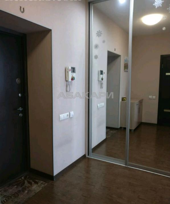 1-комнатная Толстого Свободный пр. за 28000 руб/мес фото 3