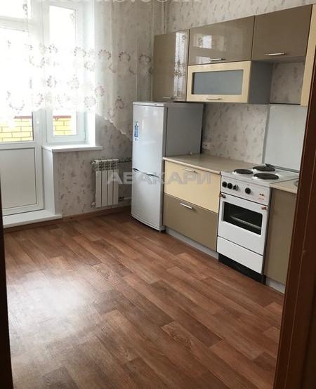 1-комнатная Калинина Свободный пр. за 15000 руб/мес фото 1
