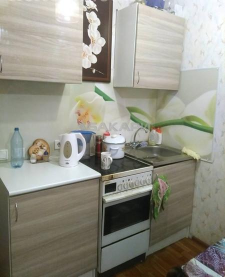 1-комнатная Карамзина Утиный плес мкр-н за 13000 руб/мес фото 2