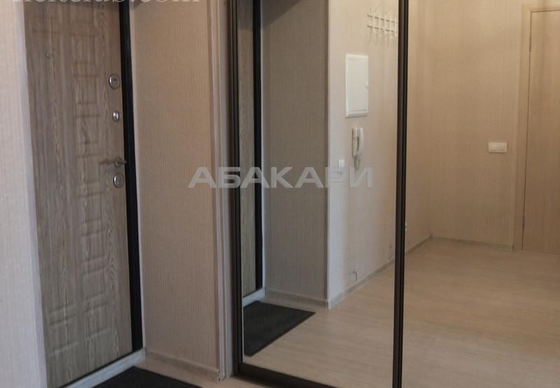 1-комнатная Академика Киренского Студгородок ост. за 23000 руб/мес фото 3