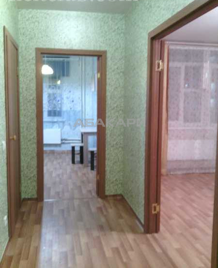 1-комнатная Соколовская Солнечный мкр-н за 12000 руб/мес фото 2