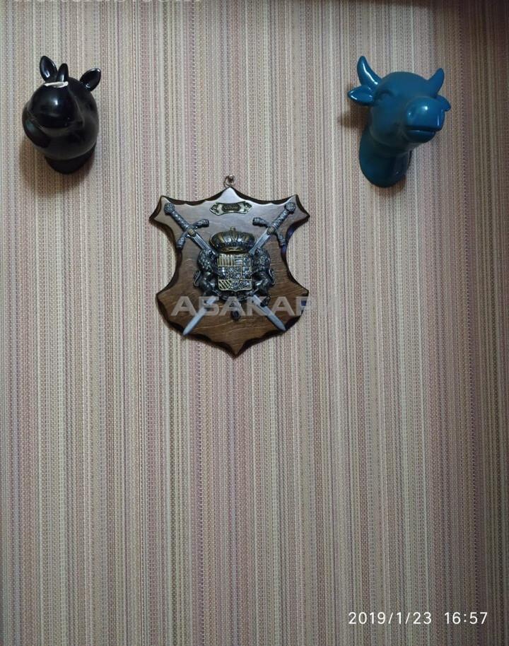 1-комнатная 1-я Хабаровская ГорДК ост. за 12500 руб/мес фото 10
