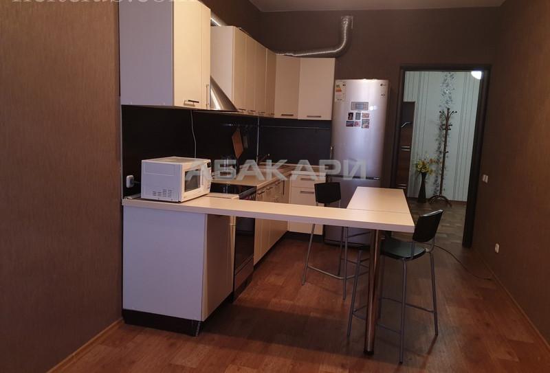 1-комнатная Ярыгинская набережная Пашенный за 17000 руб/мес фото 2