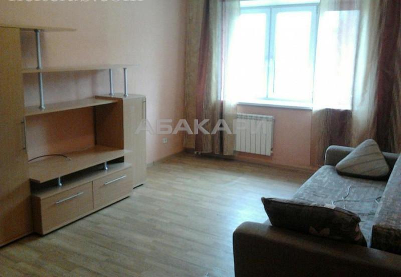 1-комнатная Толстого Новосибирская ул. за 18000 руб/мес фото 2