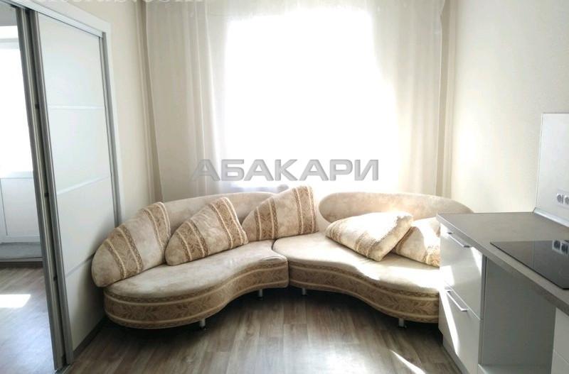 1-комнатная Судостроительная Пашенный за 17000 руб/мес фото 5