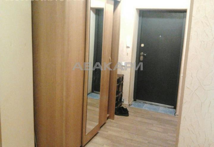 1-комнатная Толстого Новосибирская ул. за 18000 руб/мес фото 5