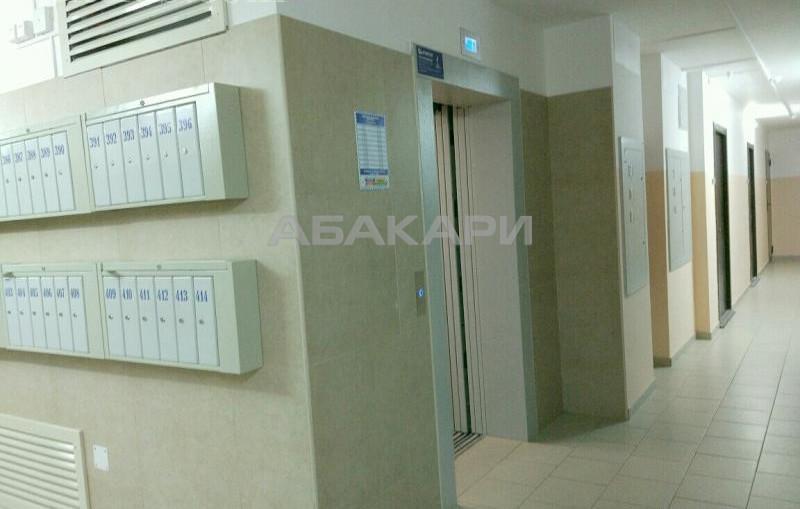 1-комнатная Карамзина Утиный плес мкр-н за 11000 руб/мес фото 13