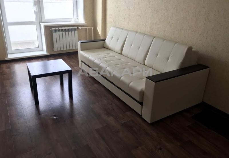 1-комнатная Калинина Мясокомбинат ост. за 12000 руб/мес фото 7
