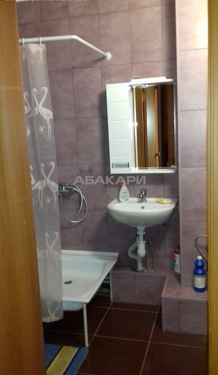 1-комнатная Серова Студгородок ост. за 12000 руб/мес фото 9