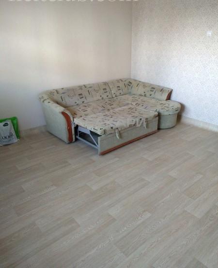1-комнатная Светлогорский переулок Планета ост. за 12500 руб/мес фото 3