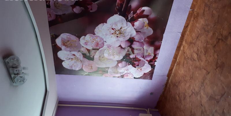 3-комнатная Семафорная Пашенный за 15000 руб/мес фото 3