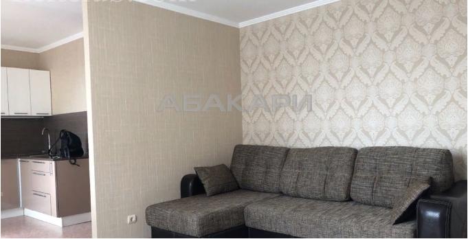 1-комнатная Новосибирская Новосибирская ул. за 27000 руб/мес фото 9
