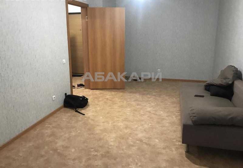 1-комнатная Карамзина Утиный плес мкр-н за 12000 руб/мес фото 6