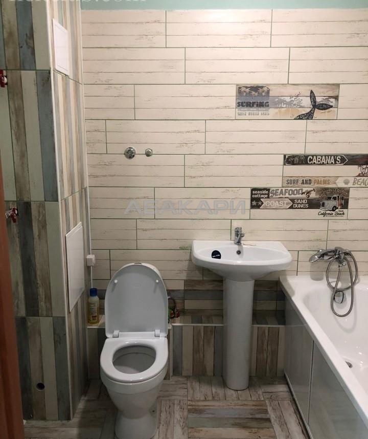 1-комнатная Светлогорский переулок Планета ост. за 15000 руб/мес фото 2