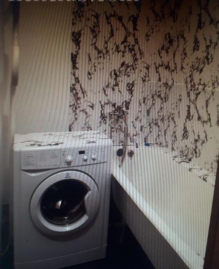 1-комнатная Судостроительная Пашенный за 12000 руб/мес фото 8