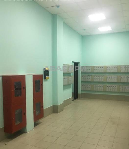 1-комнатная Судостроительная Утиный плес мкр-н за 12000 руб/мес фото 11