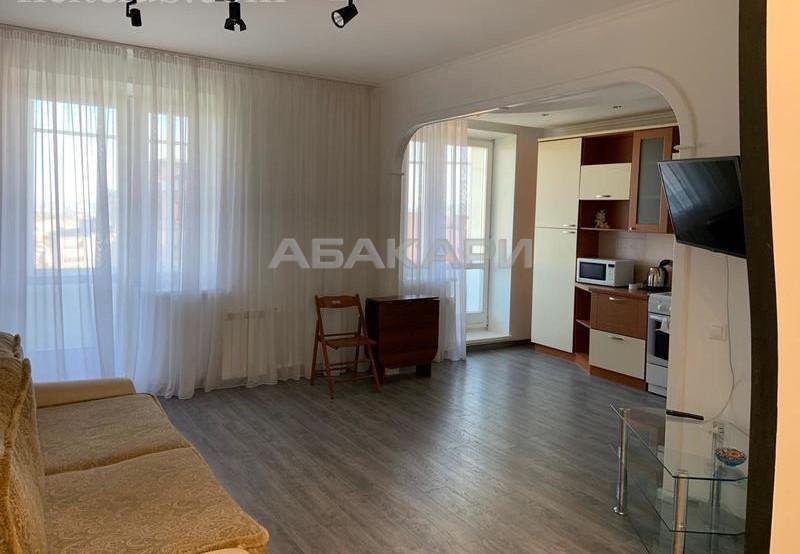 1-комнатная Толстого Новосибирская ул. за 22000 руб/мес фото 5