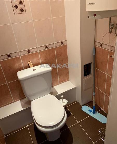 1-комнатная Толстого Новосибирская ул. за 22000 руб/мес фото 13