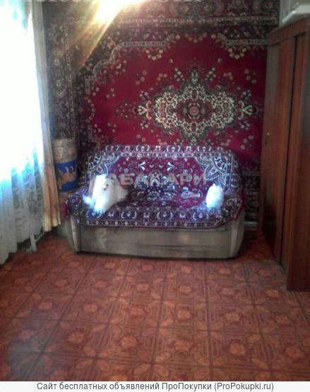 1-комнатная Курчатова ГорДК ост. за 12000 руб/мес фото 5