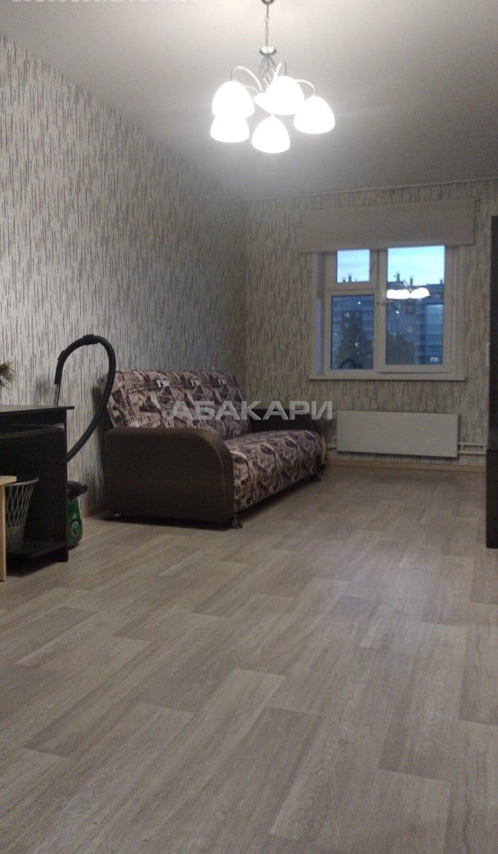 1-комнатная Серова Студгородок ост. за 14000 руб/мес фото 1