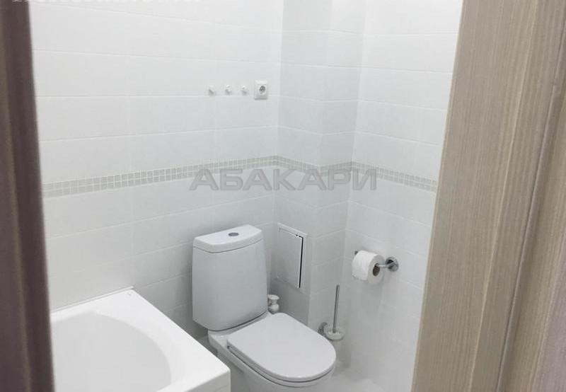 1-комнатная Карамзина Пашенный за 19000 руб/мес фото 3