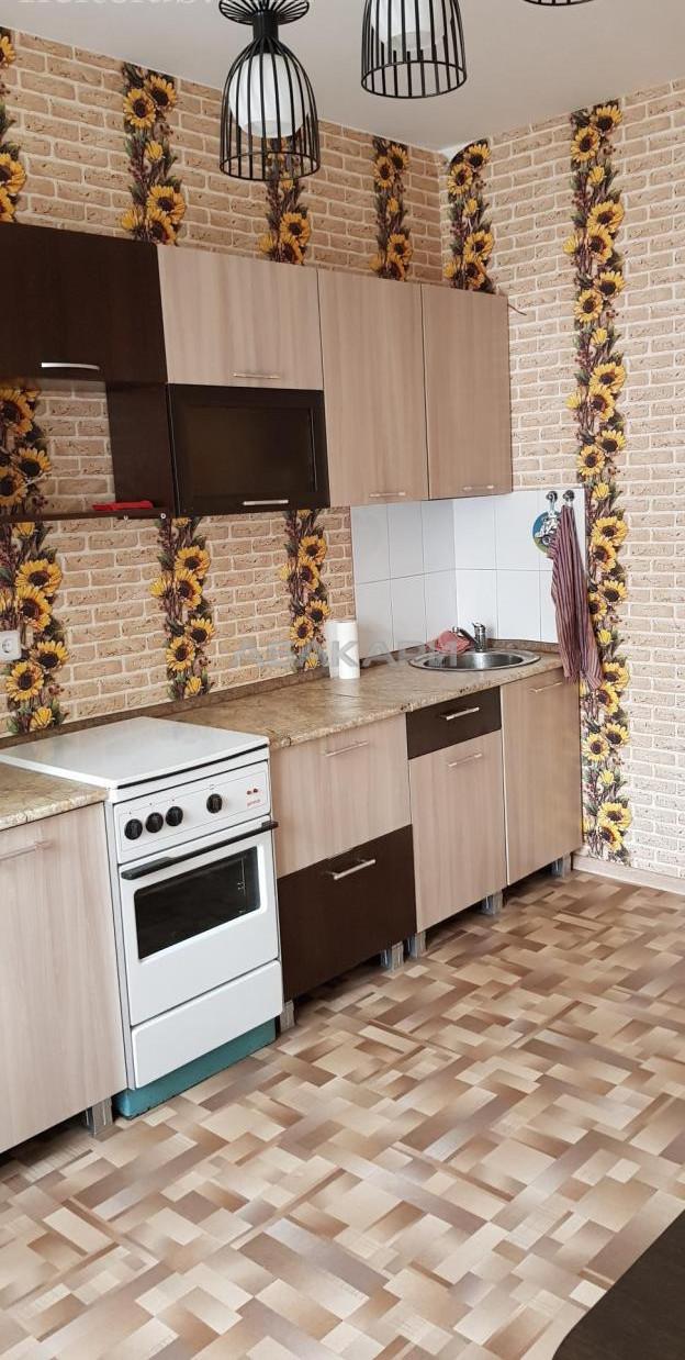 1-комнатная Дмитрия Мартынова Покровка за 19000 руб/мес фото 6