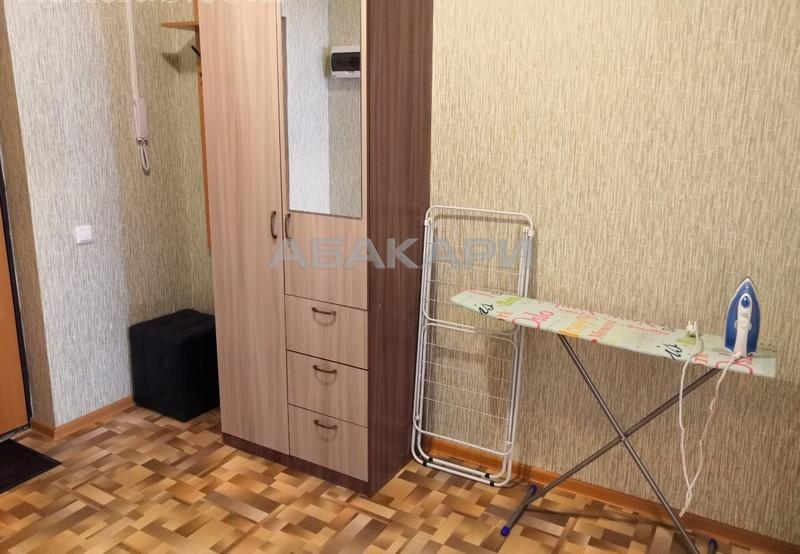 1-комнатная Республики Центр за 19000 руб/мес фото 5