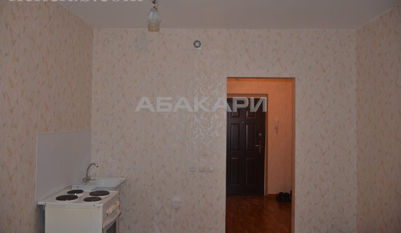 1-комнатная Карамзина Утиный плес мкр-н за 10000 руб/мес фото 5