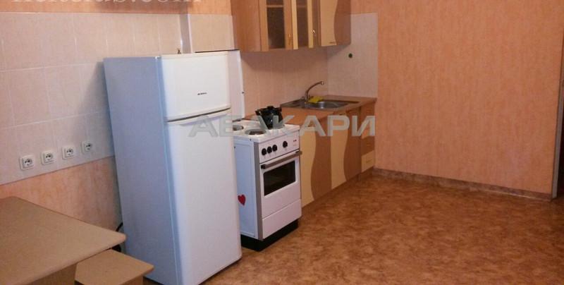 1-комнатная Бабушкина Студгородок ост. за 13000 руб/мес фото 2