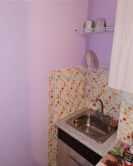 1-комнатная Карамзина Пашенный за 13000 руб/мес фото 5