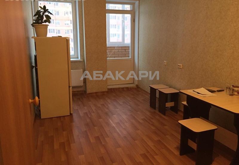 1-комнатная Соколовская Солнечный мкр-н за 12500 руб/мес фото 5
