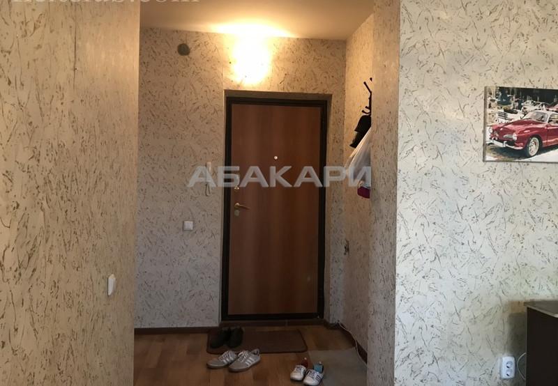 1-комнатная Судостроительная Утиный плес мкр-н за 13000 руб/мес фото 4