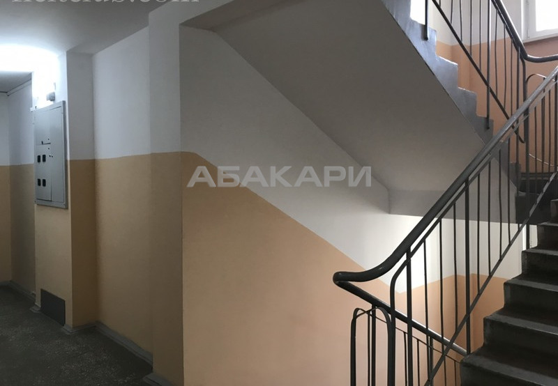 1-комнатная Судостроительная Утиный плес мкр-н за 13000 руб/мес фото 1
