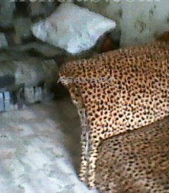 1-комнатная Вильского БСМП ост. за 12000 руб/мес фото 2