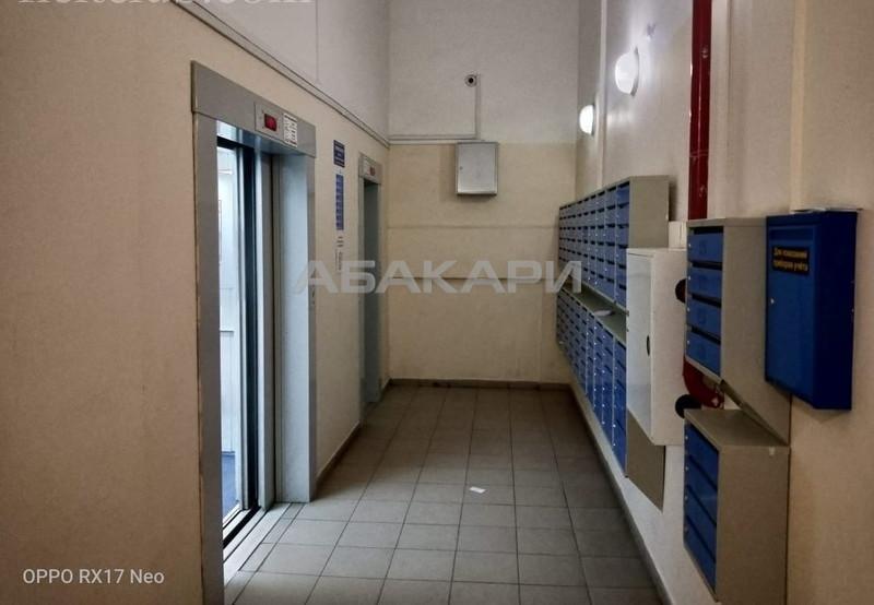1-комнатная Судостроительная Пашенный за 12500 руб/мес фото 3