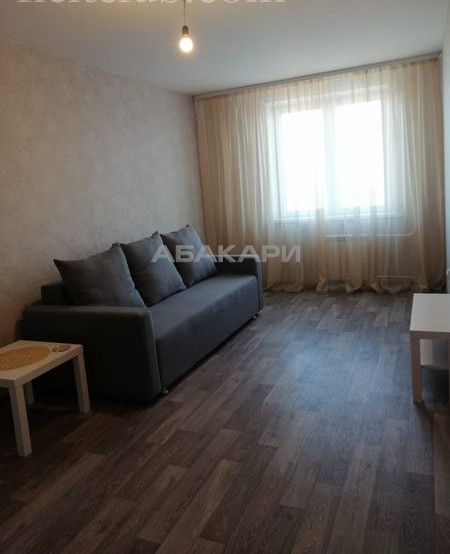 1-комнатная Дудинская Березина за 19000 руб/мес фото 8