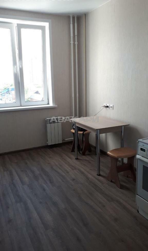 1-комнатная 6-я Полярная Березина за 16000 руб/мес фото 15