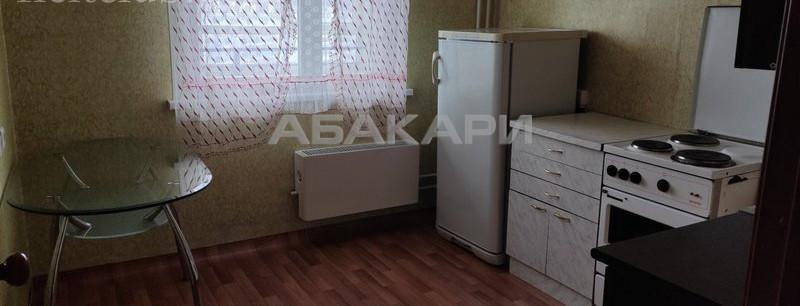 1-комнатная Ярыгинская набережная Пашенный за 14000 руб/мес фото 4