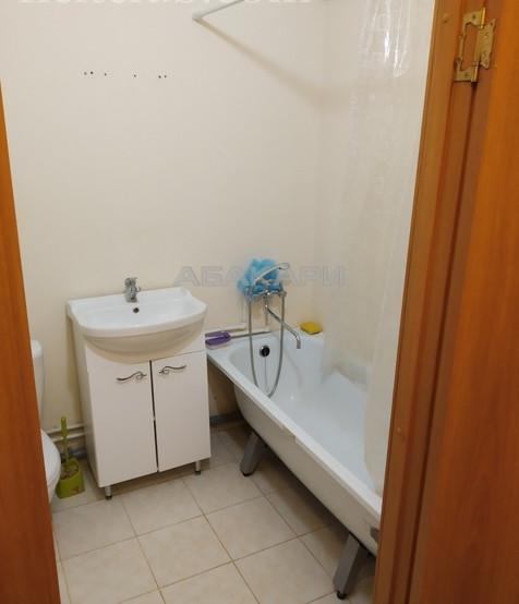 1-комнатная Калинина Свободный пр. за 12000 руб/мес фото 5
