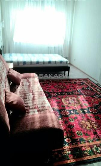 1-комнатная Бабушкина Студгородок ост. за 15500 руб/мес фото 5