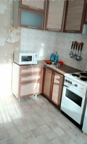 1-комнатная Бабушкина Студгородок ост. за 15500 руб/мес фото 1