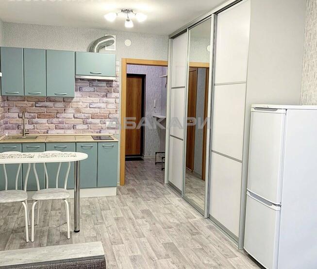 1-комнатная Ярыгинская набережная  за 13500 руб/мес фото 2