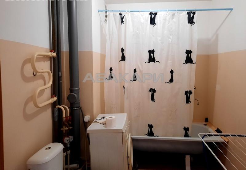 1-комнатная Серова Студгородок ост. за 15000 руб/мес фото 5