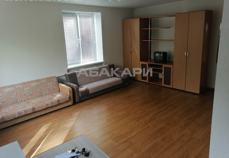 1-комнатная Свободный проспект Свободный пр. за 13000 руб/мес фото 3