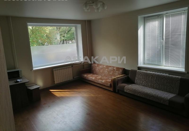 1-комнатная Свободный проспект Свободный пр. за 13000 руб/мес фото 5