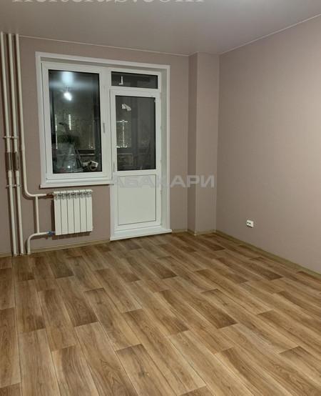 1-комнатная Петра Подзолкова Подзолкова за 12000 руб/мес фото 2