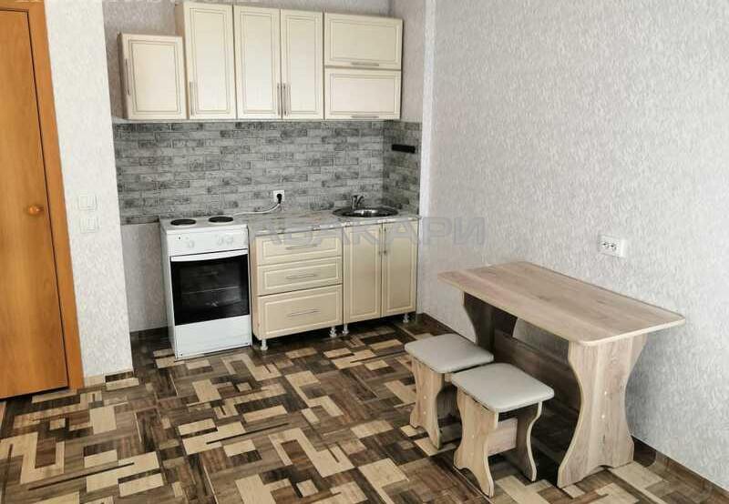 1-комнатная Судостроительная Пашенный за 14000 руб/мес фото 6