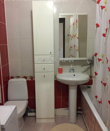 1-комнатная Толстого Новосибирская ул. за 25000 руб/мес фото 8