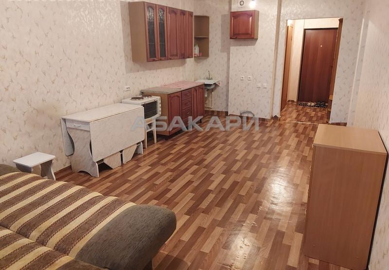 1-комнатная Соколовская Солнечный мкр-н за 12500 руб/мес фото 4
